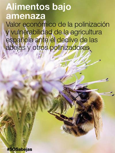 Alimentos bajo amenaza. Las abejas en peligro