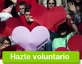 Hazte voluntario de greenpeace
