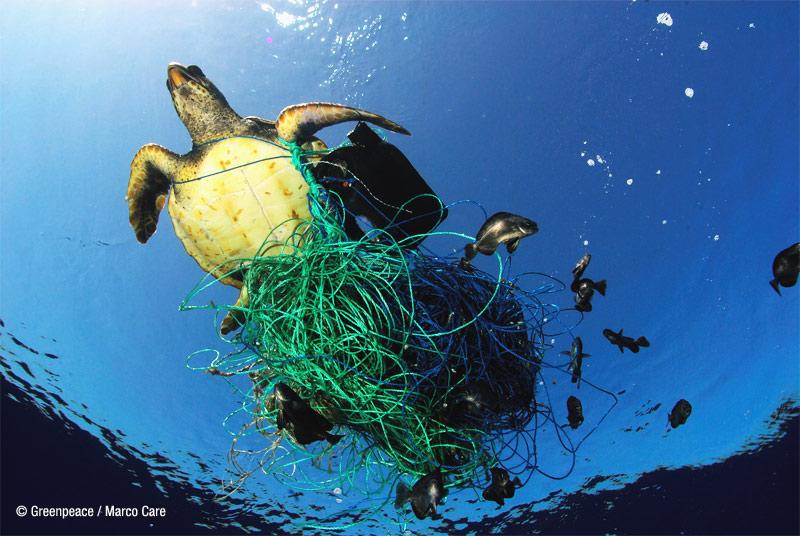 Resultado de imagen para plastico en el mar