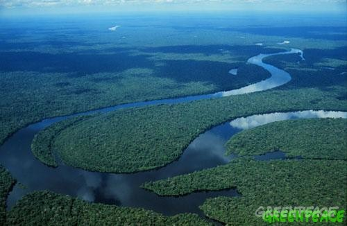 Vista Aérea Del Strip Las: Vista Aérea Del Río Cuniua, Amazonia, Brasil