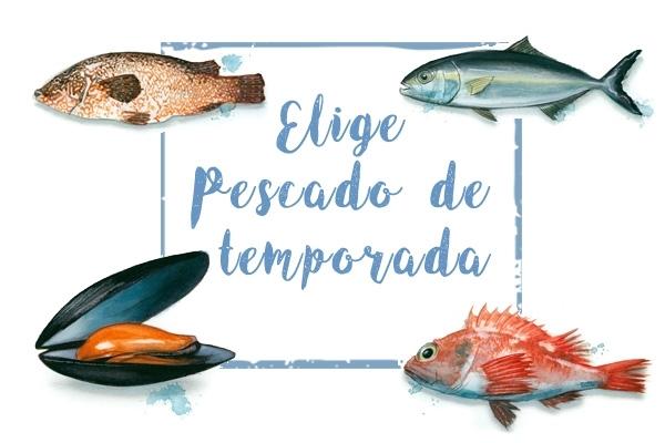 A La Pescadería Con Mi Calendario De Pescado De Temporada Greenpeace España